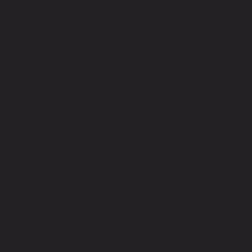 Laadur 25