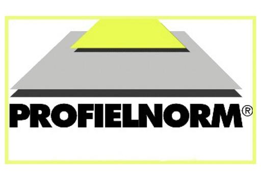 Profielnorm logo